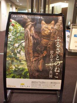 ねこ展2015ポスター2.jpg