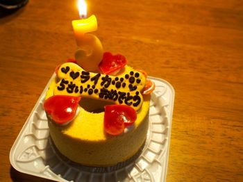 ライカ5歳ケーキ3.jpg