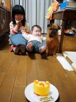 ライカ6ケーキ待て3.jpg
