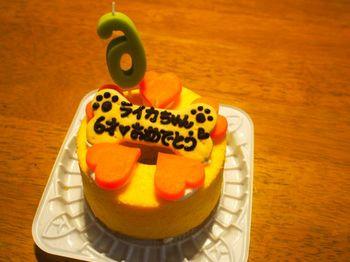 ライカ6歳ケーキ2.jpg