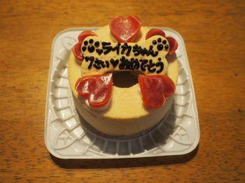 ライカ7歳ケーキ2.jpg