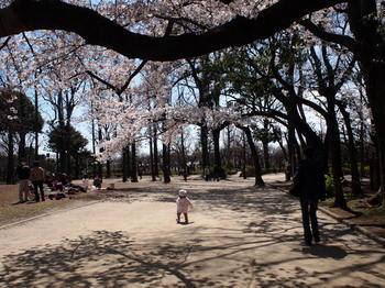 桜トンネルにこ1.JPG