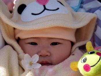 桜一輪にこ1.jpg.JPG