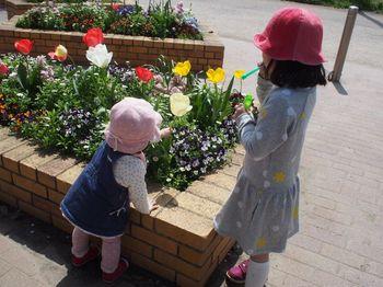 にこあんお花と1.jpg