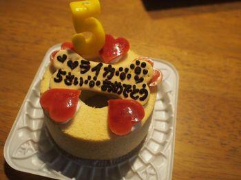 ライカ5歳ケーキ1.jpg