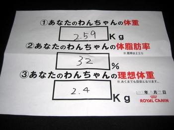 体脂肪測定5.JPG